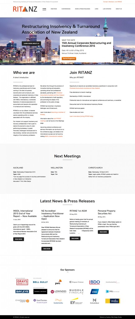 RITANZ website design