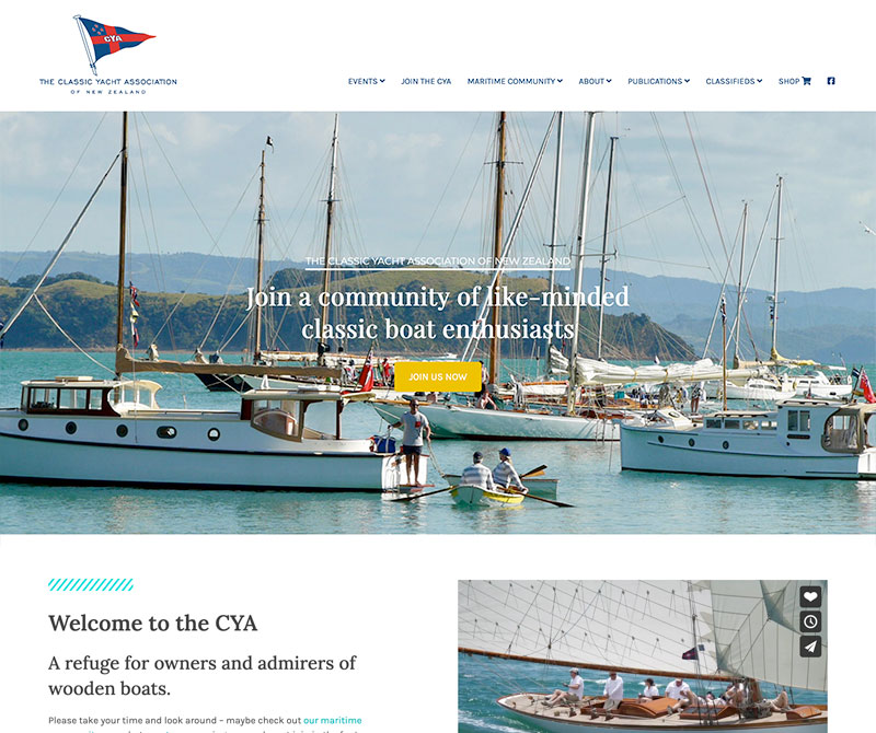 Screenshot of the website redesign for the CYANZ